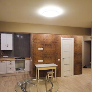 architector-oleglapto-interier-moskva-2